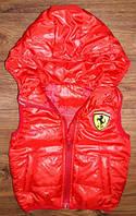 """Демисезонная детская жилетка """"Ferrari"""", 2-6 лет"""