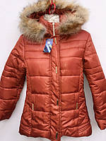Подростковая куртка на зиму на утеплителе овчина  Жинева 569