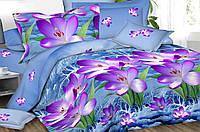 Двуспальный комплект постельного белья «Небесный цвет», ранфорс