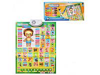 Детский обучающий плакат Joy Toy T0927  Человеческое тело
