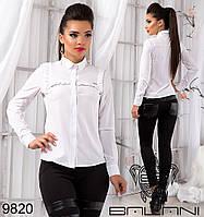 Модная женская блуза с длинным рукавом