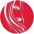 Салон-перукарня «ДОМІНО»