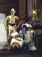 Фотообои на плотной полуглянцевой бумаге для стен 184*254 см из 4 листа: Детские, Звездные войны Три дроида