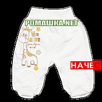 Ползунки (штаны) на широкой резинке демисезонные р. 56 с начесом ткань ФУТЕР 100% хлопок ТМ Алекс 3180 Бежевый
