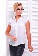 Офисная белая блузка - рубашка с короткими рукавами Альфа 42-50 размеры