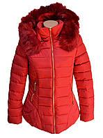Куртка женская полу батальная в двух цветах