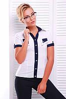 Стильная белая блузка - рубашка с короткими рукавами Ярослава 42-50 размеры