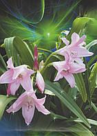Фотообои из бумаги для стен 194*268 см , 16 листов, Цветы, Лилия