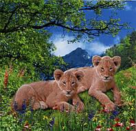Фотообои из бумаги для стен 145*134 см , 6 листов, Пейзажи, Животные, Львята