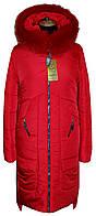Женское зимний удлиненный пуховик Мадера красного цвета, р 44-56