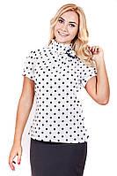 Блуза горох 033, шифоновая блузка, блуза для офиса, блузка в горошек, дропшиппинг украина