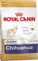 Royal canin Chihuahua junior 500г корм для щенков породы чихуахуа в возрасте до 8 месяцев