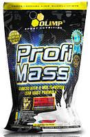 Profi Mass (1 kg)