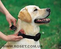 Ошейник антилай для собак АО-881