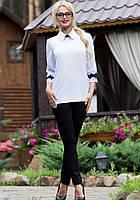 Офисная Женская Рубашка с Синим Кружевом на Спине M-2XL