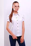 Нарядная  блуза. Молодежные блузки. Блузка стильная. Блузки скидка. Блузы женские. Купить блузку.
