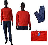 Мужской костюм Adidas 1310-10 ластик сине-красного цвета