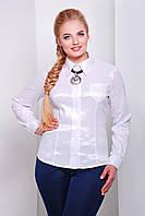 Белые блузы женские больших размеров | блуза Марта2-Б д/р