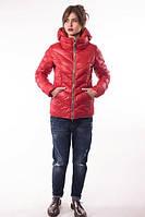 Куртка на молнии с воротником-стойка и капюшоном