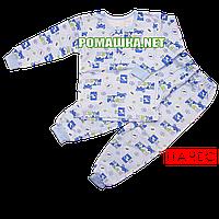 Детская байковая пижама для мальчика с начесом р. 92 ткань ФУТЕР 100% хлопок ТМ Алекс 3187 Голубой