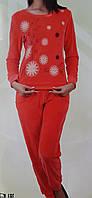 Пижама женская штаны Велюр  №87039 Nicoletta
