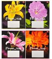 Тетрадь 36_листа клетка /Цветы