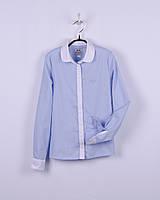 Нарядная блуза с длинным рукавом, голубая в мелкую полосочку, белый воротник, для девочки BOGI (Божі)