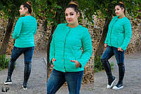 Женская весенняя курточка без воротника на кнопках больших размеров