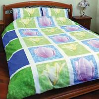 Комплект постельного белья Теп Голландия двуспальный