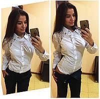 Женская стильная белая рубашка-боди  кружевными вставками. Арт-500