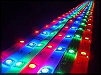 Герметичная светодиодная лента SMD 5050, Standart 30 диодов, в силиконе