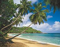 """Фотообои """"Тропическое море"""" 368х254 см"""