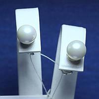 Модные серебряные серьги пусеты с жемчугом 20043-с