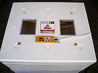 Инкубатор для яиц автоматический Теплуша 63