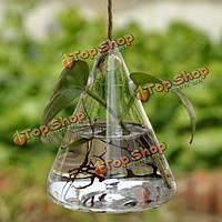 Висит треугольник стекла гидропоники ваза для цветов дома сад украшение свадьба