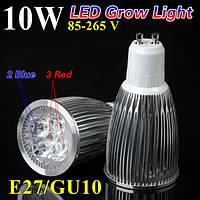 Фито-лампа для растений 10W GU10 (2 спектра: синий/красный)