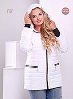 Женская красивая куртка на молнии с кнопками и прямыми карманами(Большие размеры) (5 цветов)