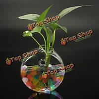Настенным круглой формы ваза для цветов дома сад украшение свадьба стекло