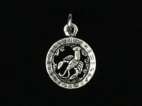 Кулон-амулет знак зодиака Рак