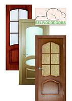 Двері шпоновані «BELWOODDOORS»