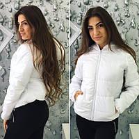 Молодежная куртка демисезонная на молнии
