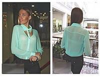 Женская блуза на пуговичках с длинным рукавом