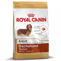Корм для собак (Роял Канін) ROYAL CANIN Dachshund 6 кг - Для дорослих собак породи такса