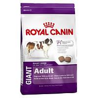 Корм для собак (Роял Канін) ROYAL CANIN Giant Adult 15 кг - для дорослих собак гіганських порід
