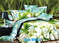 Комплект постельного белья (евро-размер) - №662