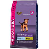 Корм для собак EUKANUBA Puppy & Junior Large Breed 15 кг для щенков и юниоров крупных пород