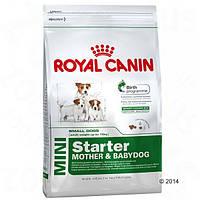 Корм для собак (Роял Канін) ROYAL CANIN Mini Starter 8,5 кг - для вагітних, годуючих та цуценят, дрібні породи