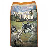 Корм для собак Taste Of The Wild High Prairie Puppy Formula 13 кг для цуценят з м'ясом бізона і оленя
