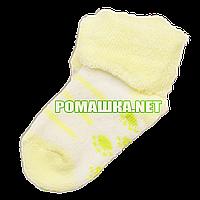 Детскае махровые носки р. 56-62 для новорожденного 95% хлопок 5% эластен ТМ Ромашка 3195 Желтый