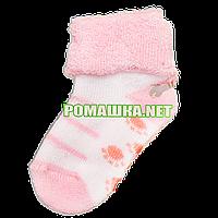 Детскае махровые носки р. 56-62 для новорожденного 95% хлопок 5% эластен ТМ Ромашка 3195 Розовый